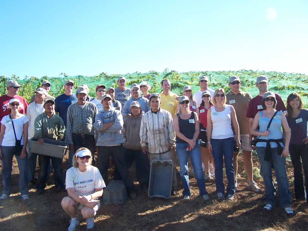 Harvesting at Wine Boot Camp