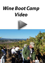 Wine Boot Camp Video