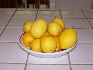 When live gives you lemons...