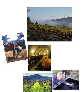 Wine Country Scavenger Hunt